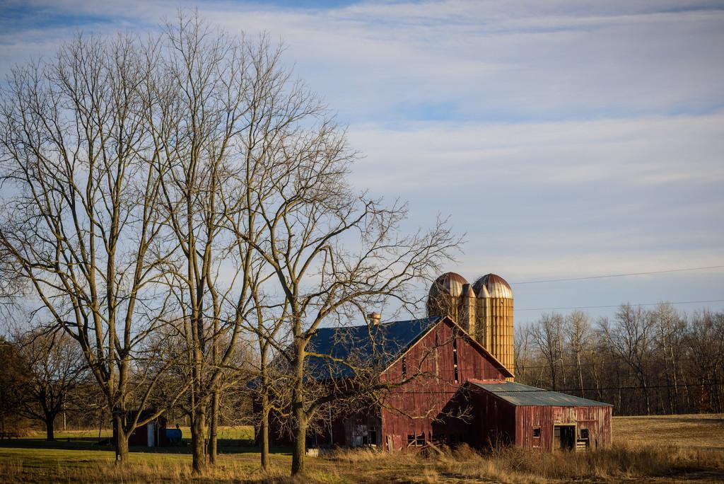 barn with blue skies by jackies365