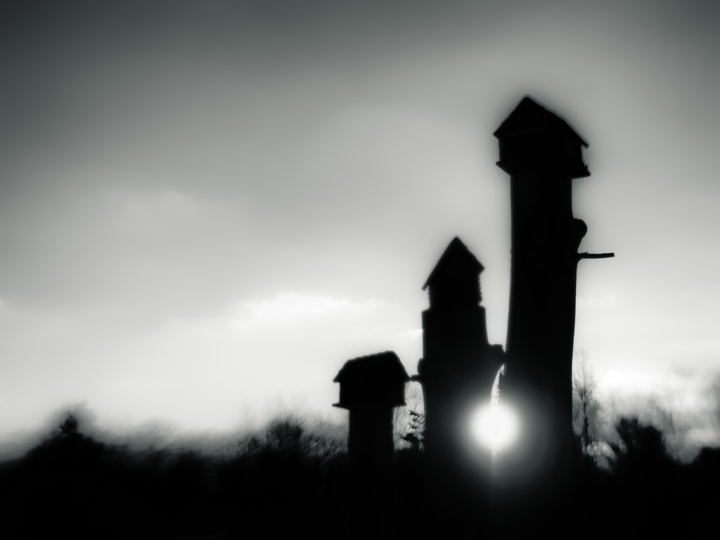 lensbaby birdhouses at daybreak... by northy