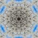 Frost Kaleidescope  by milaniet