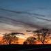 Evening skies....... by susie1205