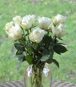 29th Jan 2018 - Roses - a Gift
