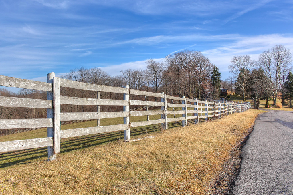 Fence by the road by mittens