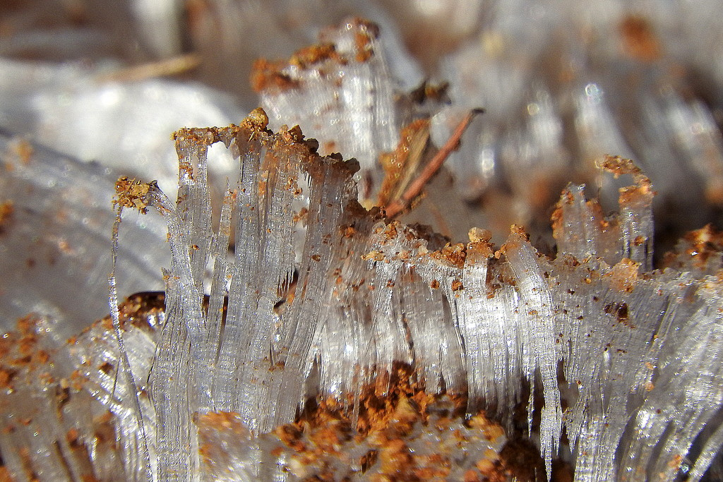 Sand on Ice Needles by homeschoolmom