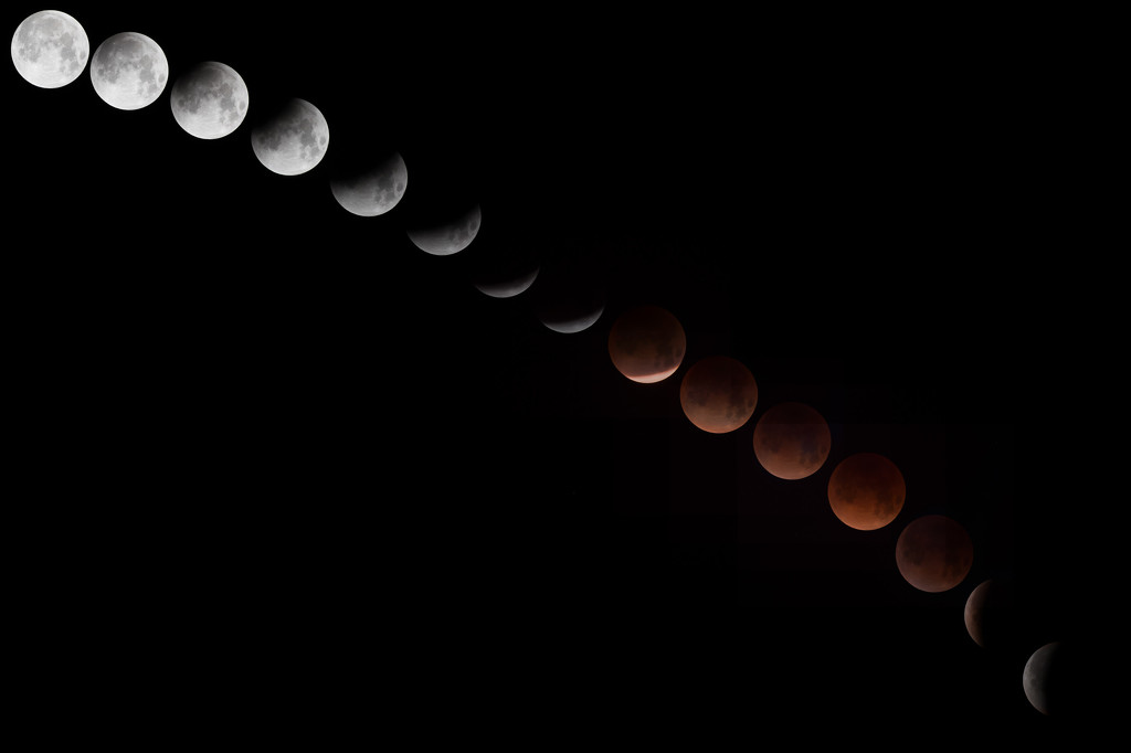 2018 Lunar Eclipse, New Moon, Super Moon by mikegifford