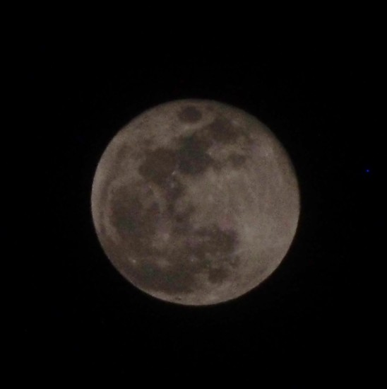 Super Blue Moon by selkie