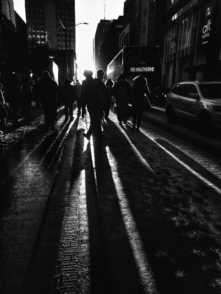 Follow the light by adi314