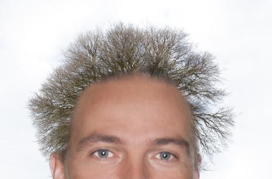 WWYD165 - bad hair day? by houser934