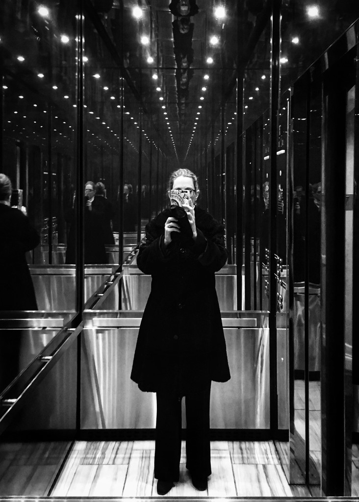 Hall of Mirrors  by rosiekerr