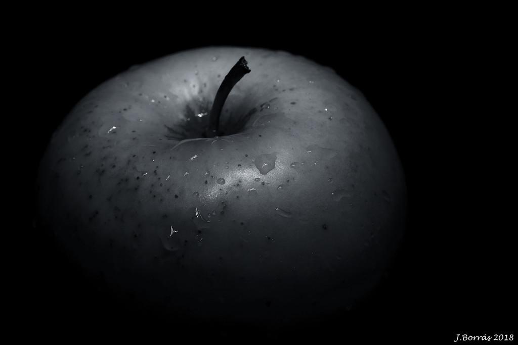 Apple by jborrases