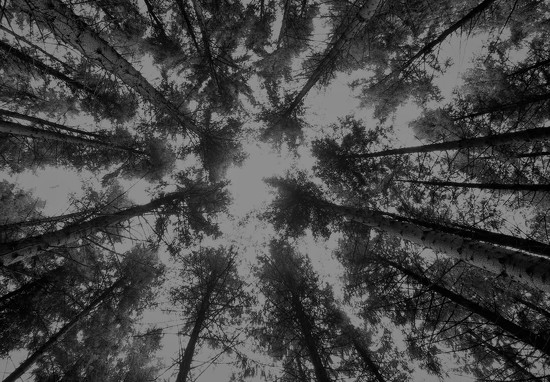 Kaleidoscope by motherjane