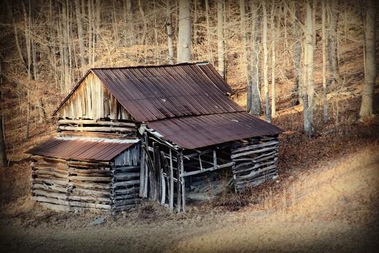 Log Barn by calm