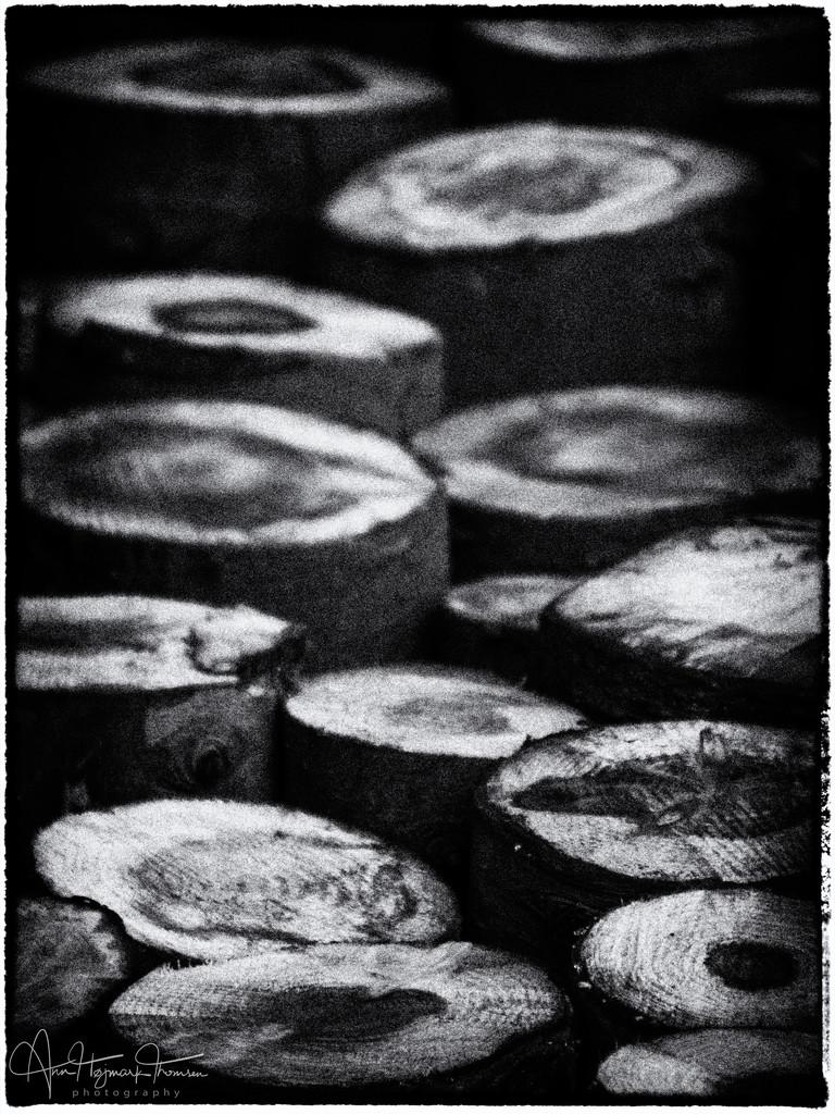 Logs by atchoo