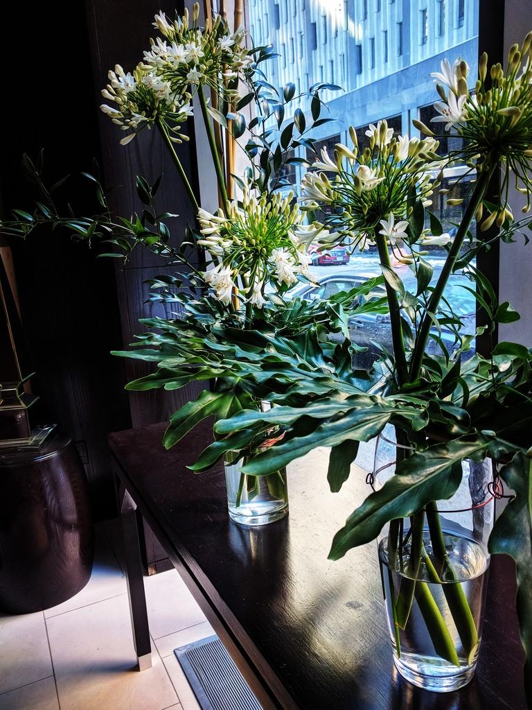 Lobby flowers by adi314