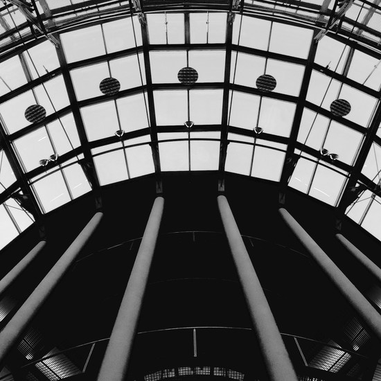 looking up in B&w by vincent24