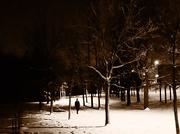 7th Feb 2018 - Winter Night Walk