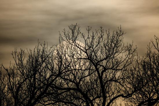 Subtle Sunset by kareenking