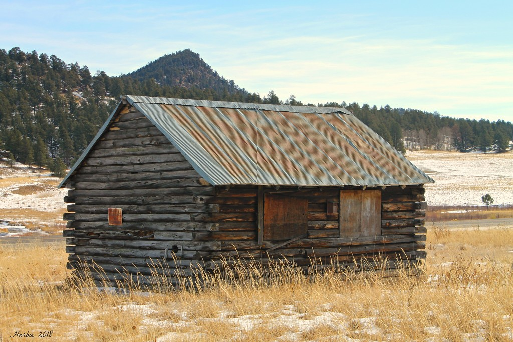Abandoned Cabin by harbie