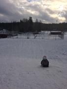 9th Feb 2018 - Keep on sledging.