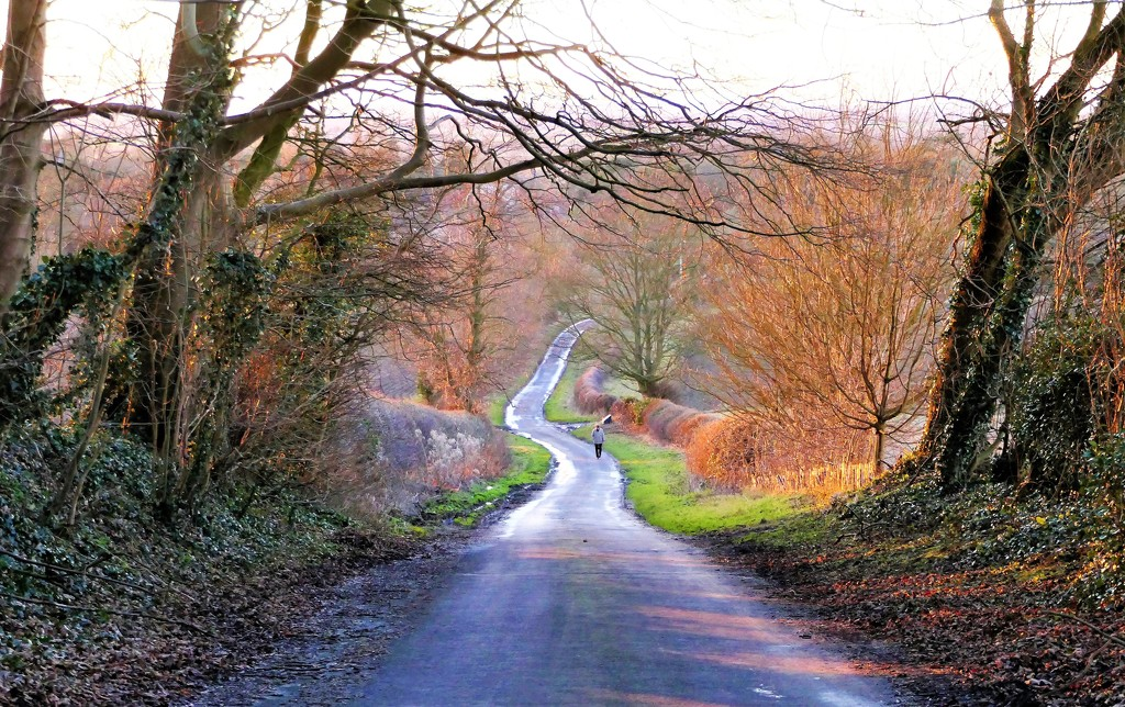 Country Road with Man by carole_sandford