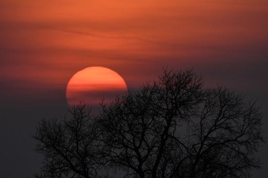 Kansas Sunset 2-9-18 by kareenking