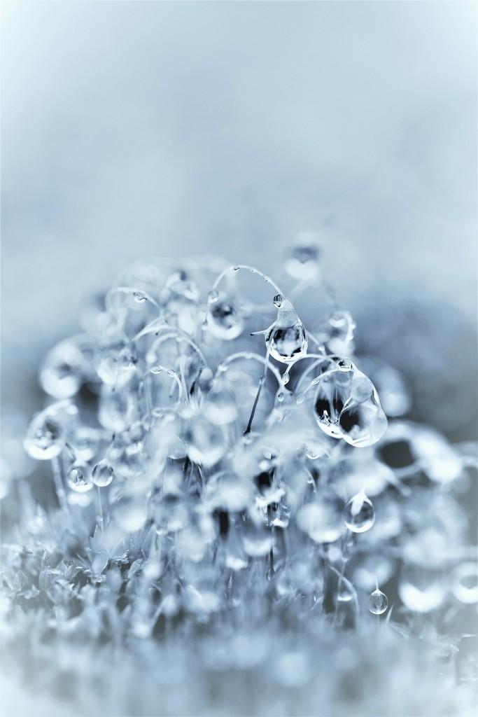Water Water Everywhere .... (For Me Album) by motherjane