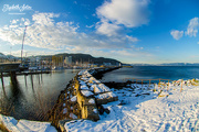 10th Feb 2018 - Trondheim harbor ( photographed with fisheye )