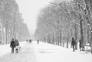 11th Feb 2018 - Oh Champs Elysées!