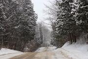 11th Feb 2018 - Winter Wonderland