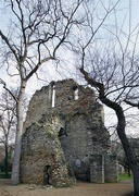 11th Feb 2018 - ruins of a medieval church