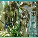"A lovely ""Fairy garden"""