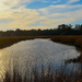Old Towne Creek and late afternoon light, Charleston, SC