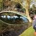 Bridge at Chippenham Park