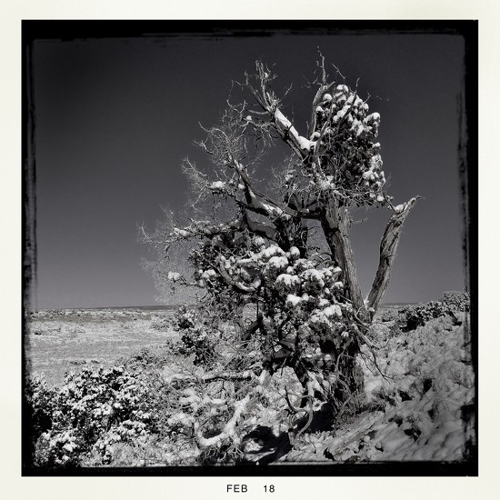 Winter - Finally by jeffjones
