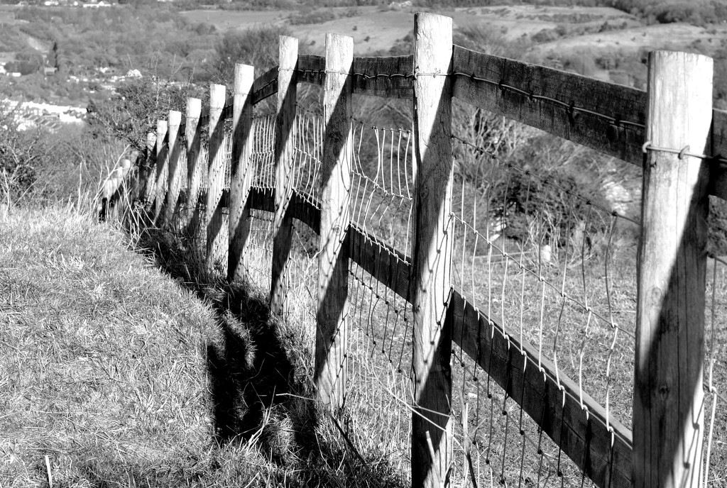 The Other Side of the Fence by redandwhite