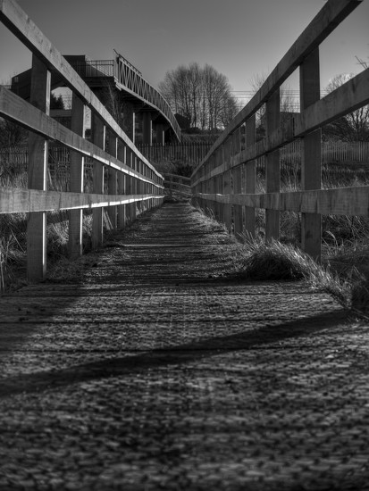 Boardwalk to bridge. by gamelee