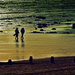 Couple walking along Bognor beach by ivan