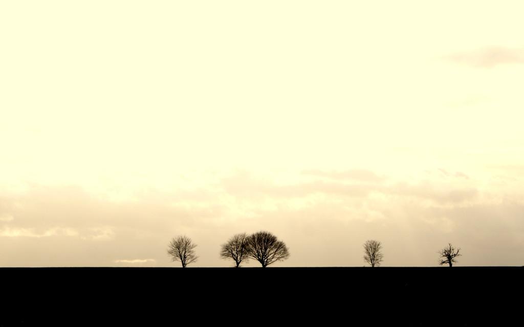 On the horizon by filsie65