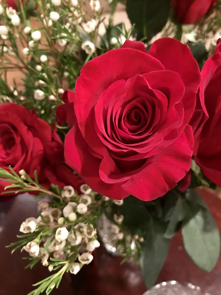 Happy Valentine's Day!  by louannwarren