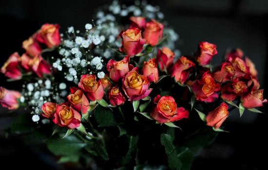 Valentine's Day  by loweygrace
