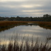 Tidal creek, marsh and clouds