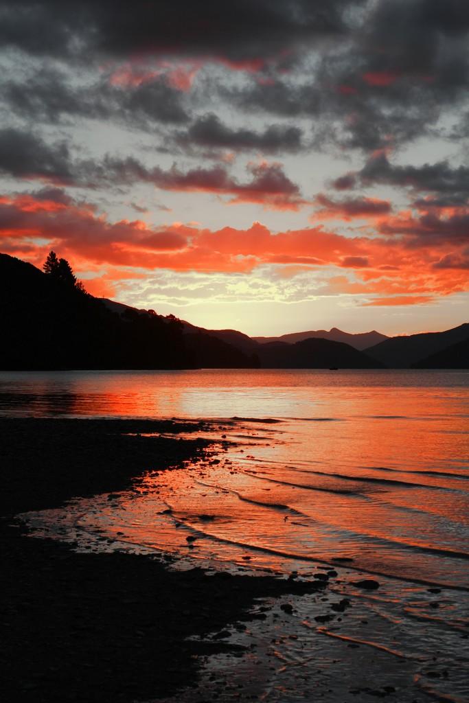 Sunset red by kiwinanna