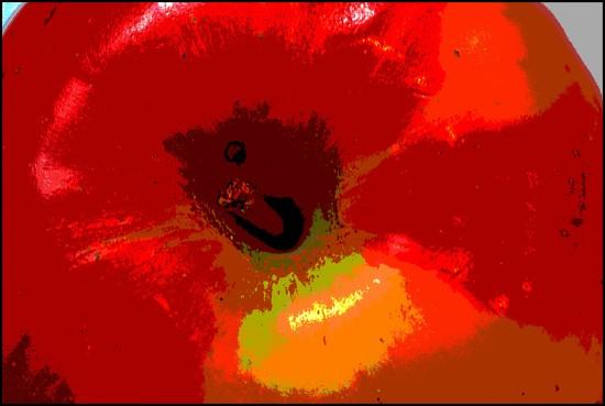 The Apple of My Eye by olivetreeann