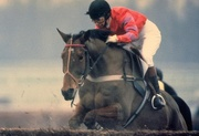 5th Apr 2019 - 95 Princess Anne Riding Cnoc Na Cuille at Kempton Park
