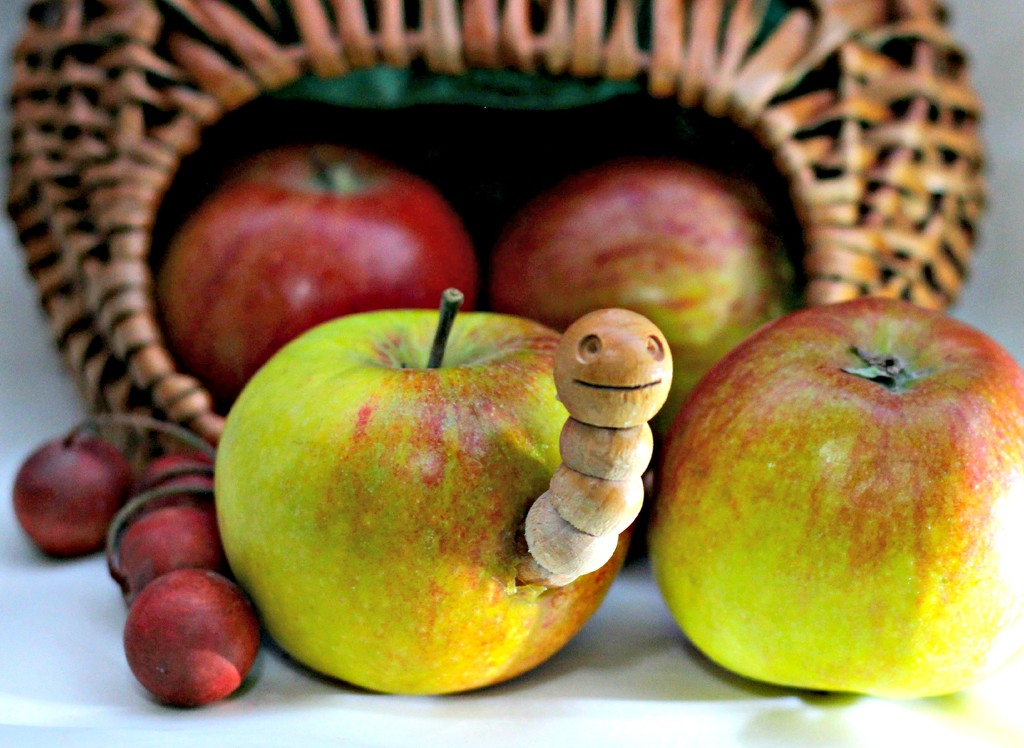 A Worm in my Apple. by wendyfrost