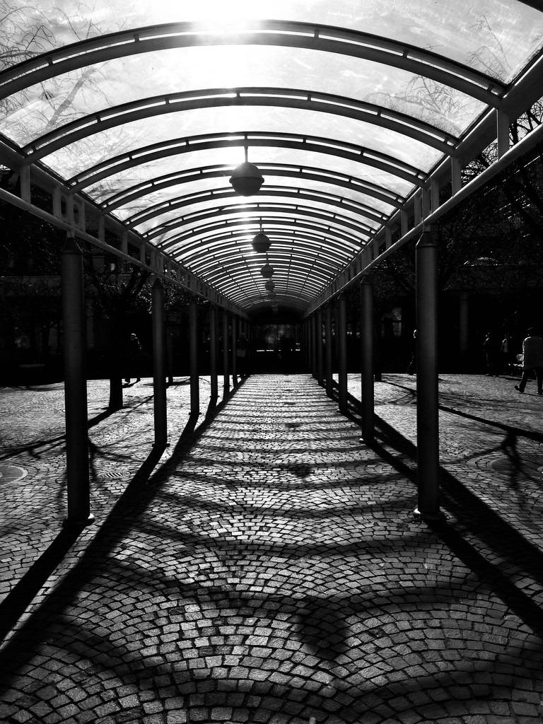 Covered path by vincent24