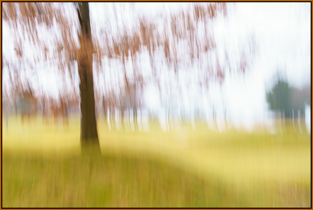 Abstract tree by jernst1779