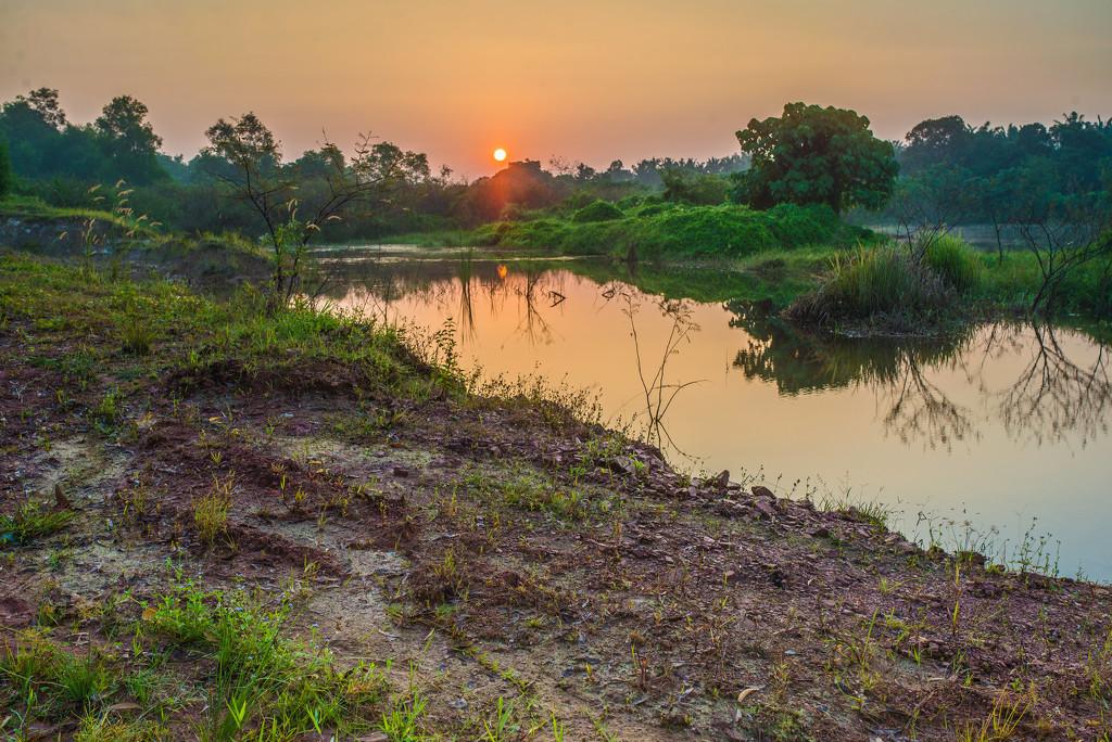 Sunrise Guar Petai by ianjb21