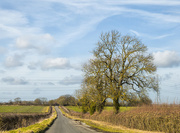 17th Feb 2018 - Country Lane