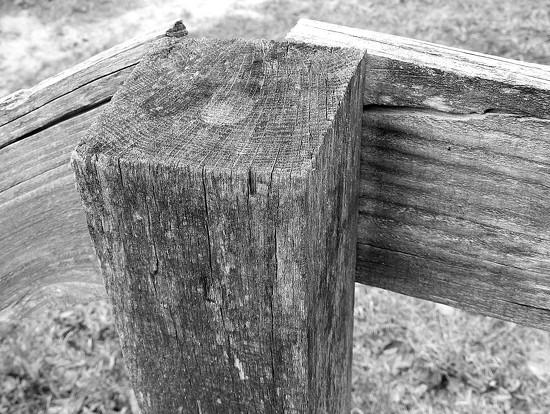 Wood Texture by homeschoolmom