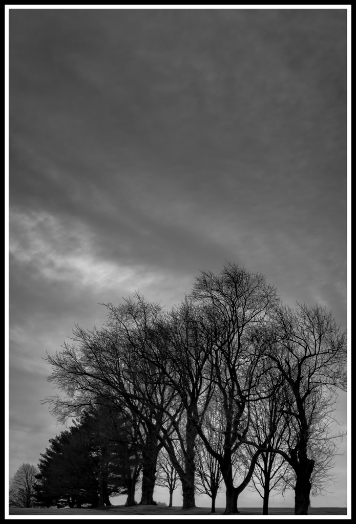 gloomy day by jernst1779